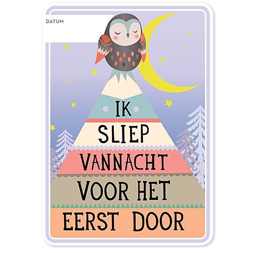 Milestone Babycards (NL)